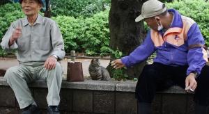 """Metoda """"na wnuczka"""" rozpowszechniła się także w Chinach. Są zatrzymania"""