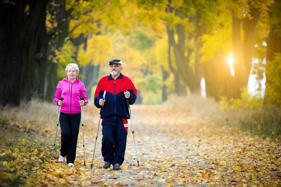 Nordic walking: jak dobrać sprzęt i prawidłowo chodzić?