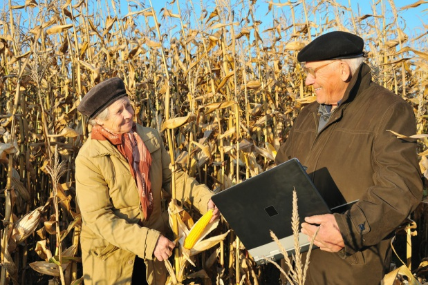 Renty strukturalne dla rolników tylko do osiągnięcia wieku emerytalnego