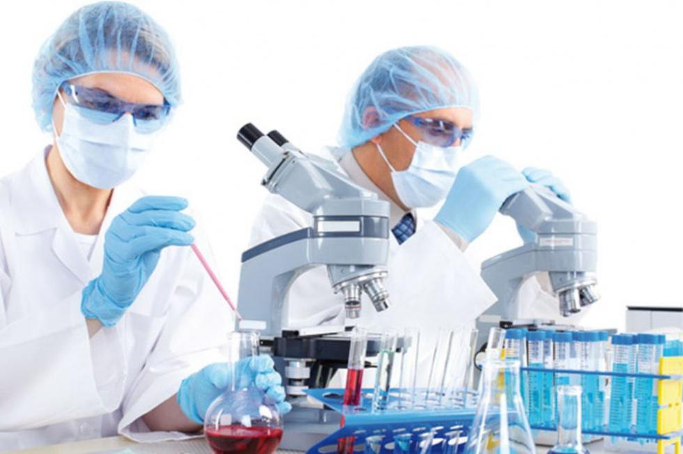 Odkryli związek układu odpornościowego z chorobą Azheimera