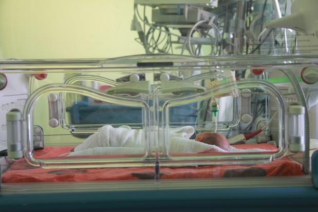 Niemcy: czworaczki urodzone przez 65-latkę opuszczają szpital