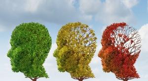 Demencja - co piąta osoba po 80 r.ż. będzie ją miała. Jak przygotować system?
