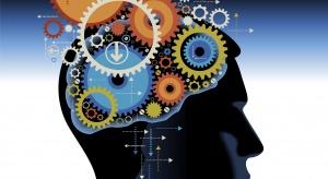 Naukowcy: z mózgu, tak jak z twardego dysku, można odzyskać utracone dane