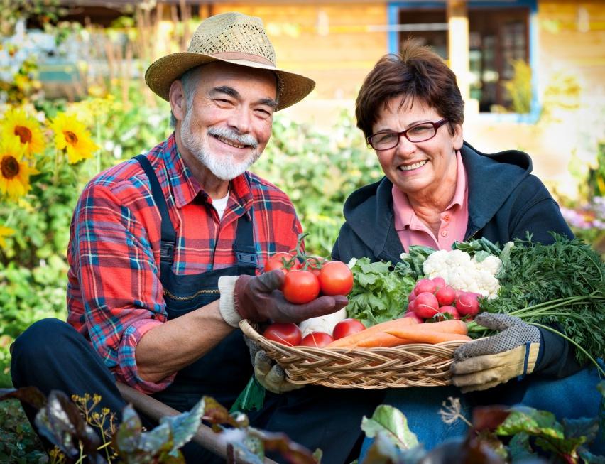 Eksperci: starzenie tylko w 25 proc. zależy od genów, w 75 proc. - od stylu życia