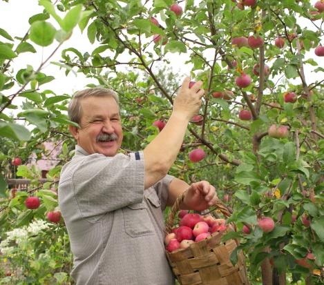Substancje zawarte w jabłkach i pomidorach opóźniają zanik mięśni