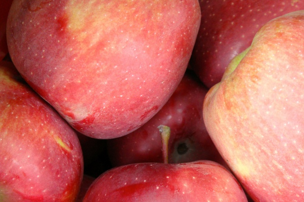 Jabłka z policyjnego sadu dla zakładu opieki długoterminowej i domu dziecka