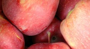"""Jedno jabłko dziennie i """"szansa"""" na raka zdecydowanie maleje"""