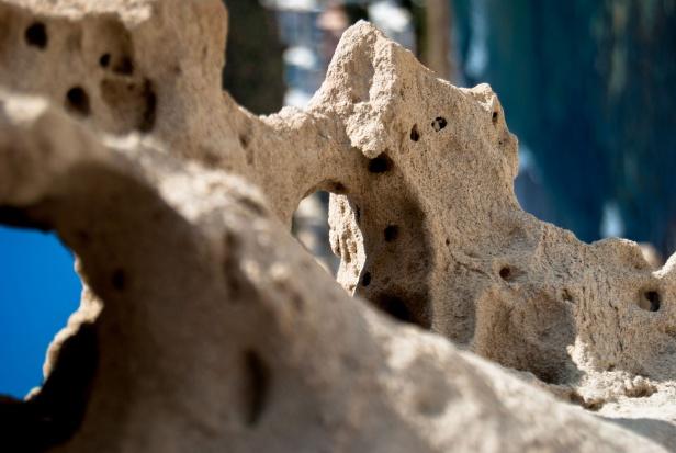 Eksperci: pierwsze złamanie osteoporotyczne to bezwzględny sygnał do terapii