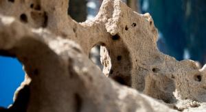 HCC 2017: osteoporoza to problem światowy, wykraczający poza medycynę