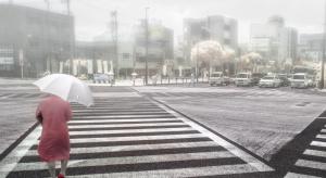 Japonia: rząd chce przesiedlać najstarszych na prowincję i tworzy enklawy emerytów