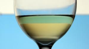 DPS-y są nieprzystosowane do opieki nad alkoholikami