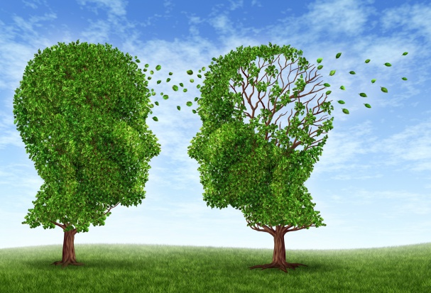 Badania: ukwiał może pomóc w walce z chorobą Alzheimera