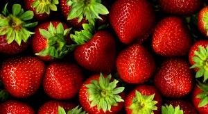 Dietetyk: im intensywniejszy kolor owoców lub warzyw, tym są zdrowsze