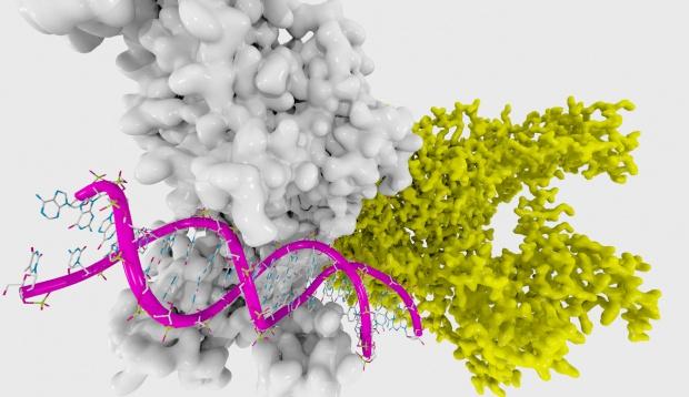 Na oporny nowotwór - genetyczny skalpel. W Chinach ruszają badania