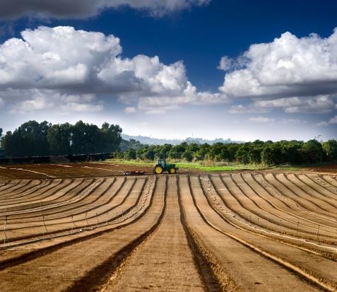 RPO do KRUS: rolnikom uprawnionym do renty nie należy się emerytura z urzędu
