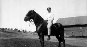 Roszczenie za konia przekazanego wojsku w 1939 roku - przedawnione