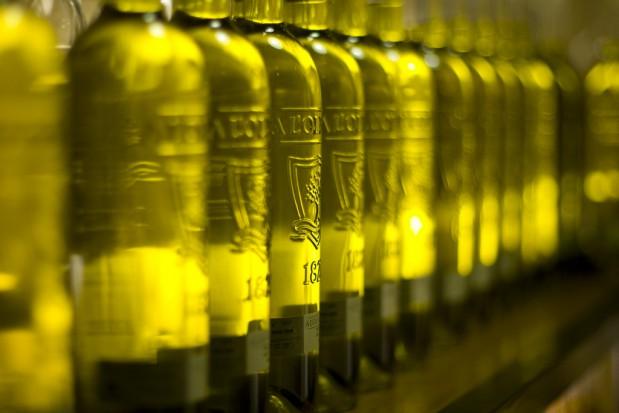 Już wiadomo, dlaczego oliwa z oliwek zapobiega miażdżycy