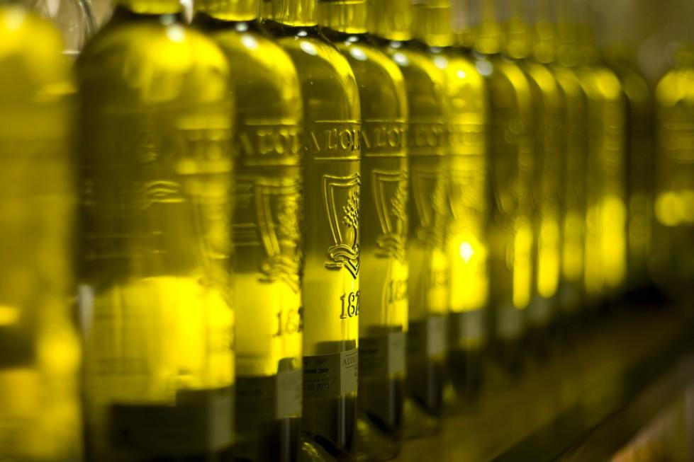 Oliwa z oliwek może zapobiegać rakowi mózgu?