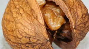 Badanie: orzechy pobudzają fale mózgowe