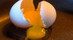 Badania: jaja są jednak zdrowe?